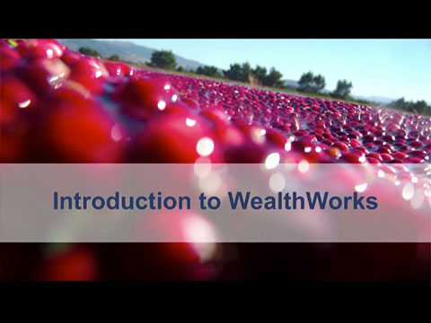 Find Resources | WealthWorks org